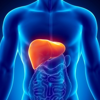 Genetic variation linked to drug-induced liver damage in some patients